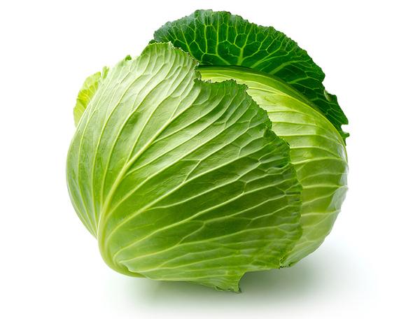 白菜.jpg